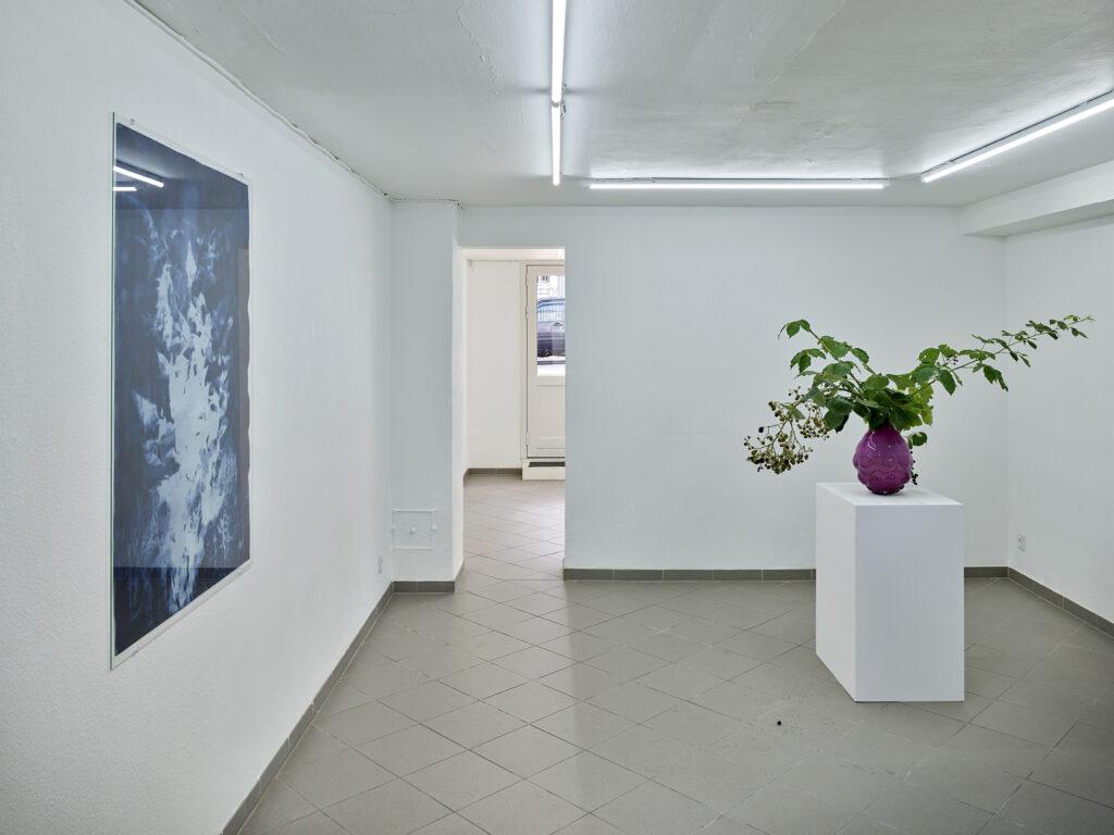 LGUFREMMOS installationsfoto fra udstilling med Tue Greenfort. Foto Kirstine Mengel